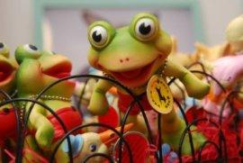 kikkerspeelgoed.jpg